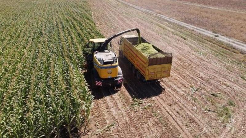 Karaman'da tarımsal destekle alınan biçerdöverle mısır hasadı