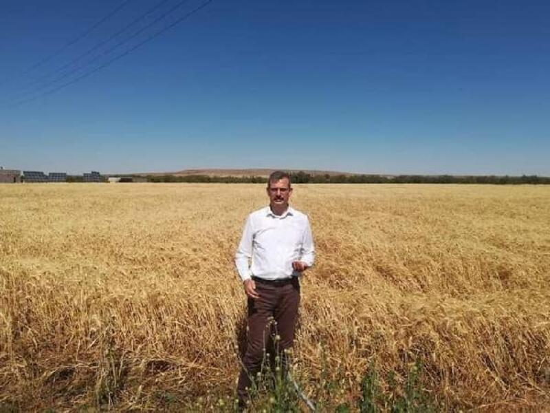 Kilis'te çiftçilere kuraklık desteği