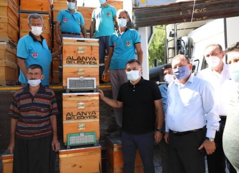 Alanya Belediyesi'nden yangınzede arıcılara 350 kovan