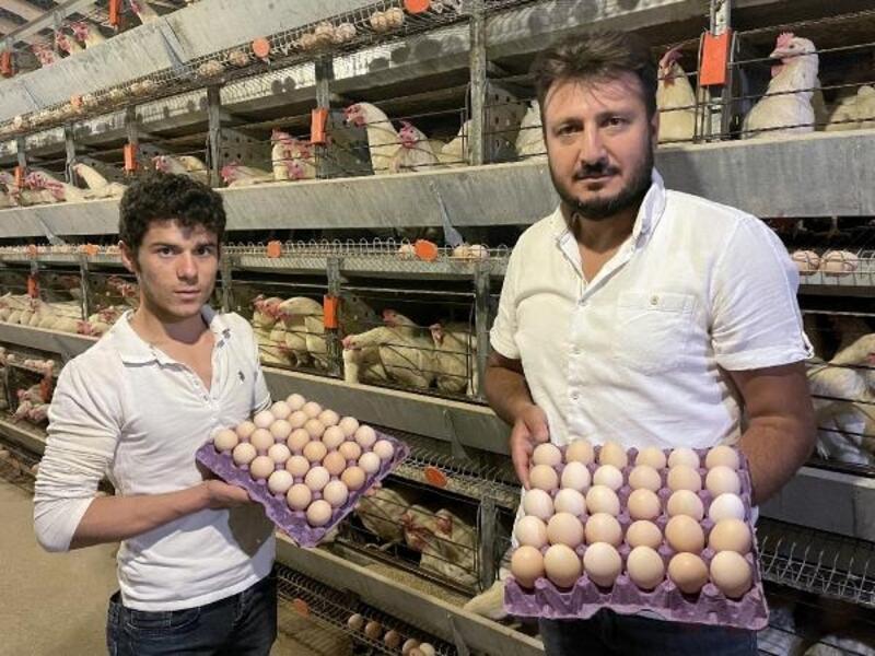 Annesini örnek aldı 15 bin tavuklu çiftlik sahibi oldu