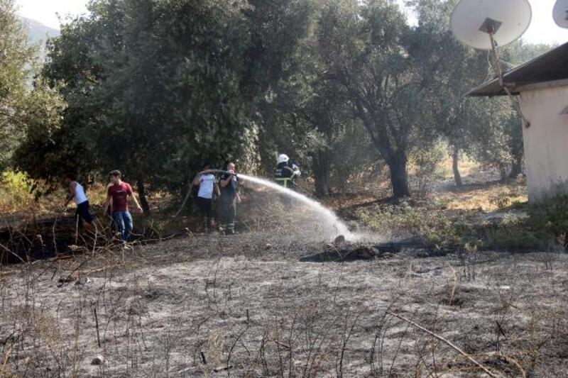 Hatay'da iki mahallede bahçe yangını