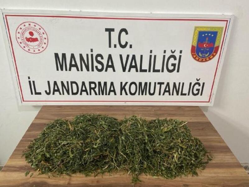 Manisa'nın 2 ilçesinde uyuşturucu operasyonu