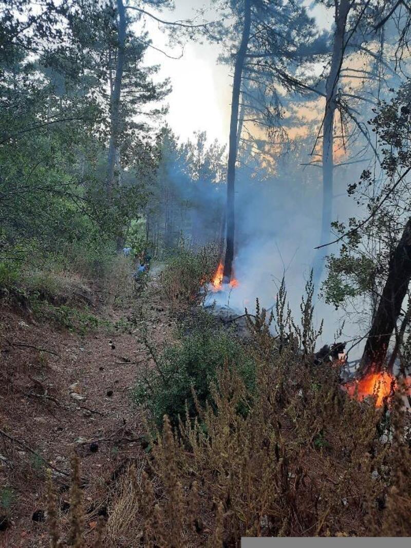 Hatay'da çıkan orman yangını büyümeden söndürüldü