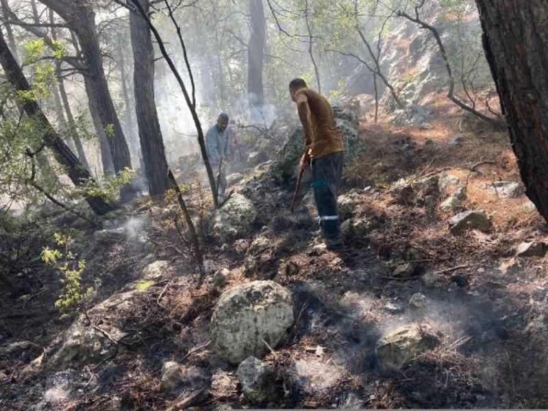 Kemer'de orman yangını büyümeden söndürüldü