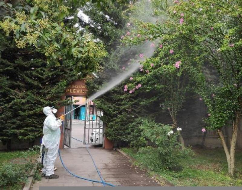 Bağcılar'da dantel böceğine karşı önlem