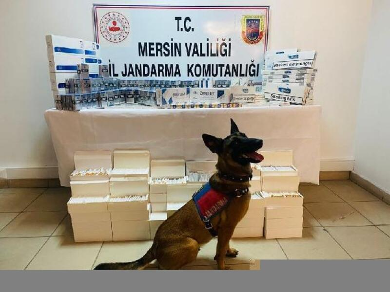 Mersin'de 'kaçak sigara' operasyonu:4 gözaltı