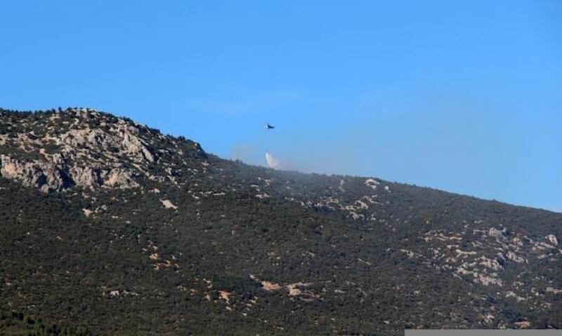 Bucak'ta orman yangını büyümeden söndürüldü