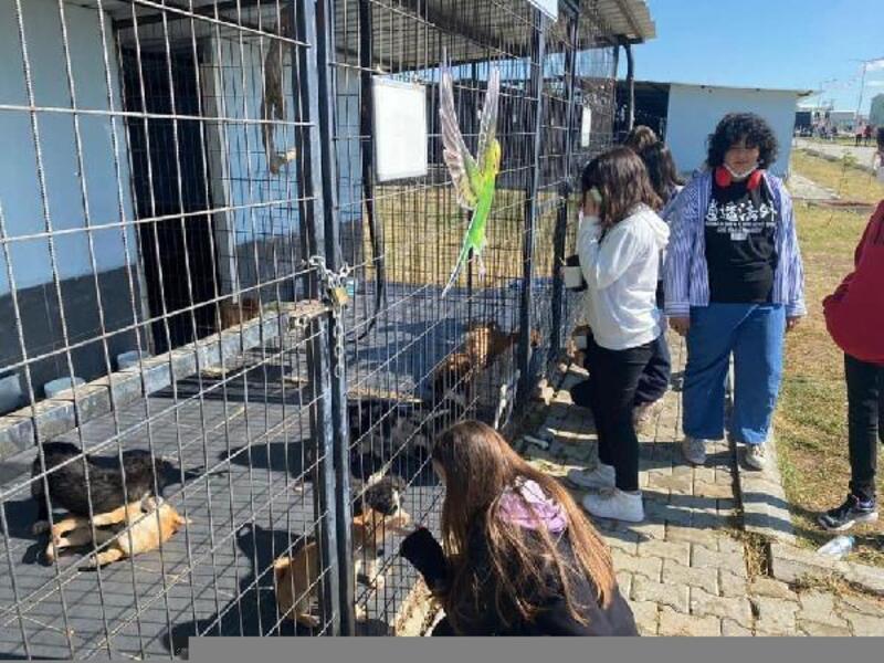 Keşan'da, sokak hayvanları bakımevini, öğrenciler ziyaret etti