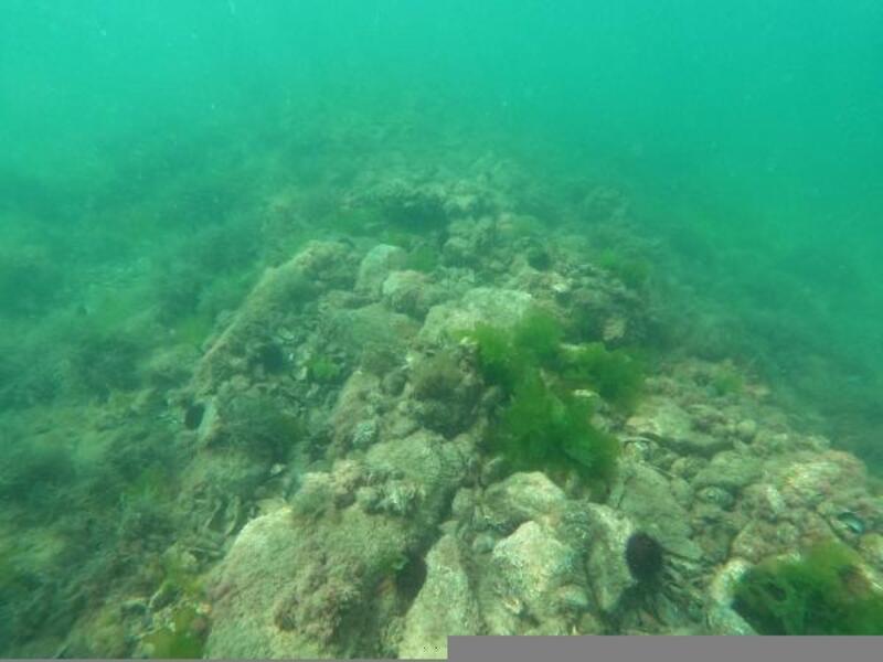 Hersek Lagünü'nde batık gemi keşfedildi