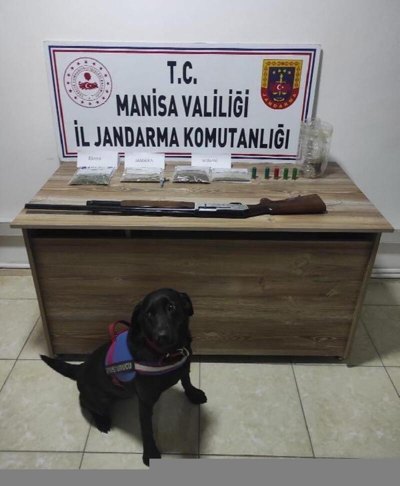 Evlerdeki uyuşturucuları narkotik köpeği 'Arya' buldu, 4 gözaltı