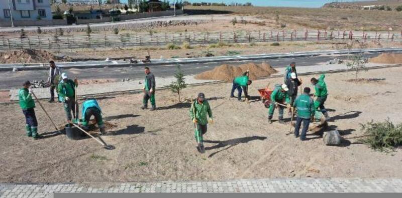 Kocasinan Belediyesi, yeşil alanlarda bakım çalışmalarını sürdürüyor