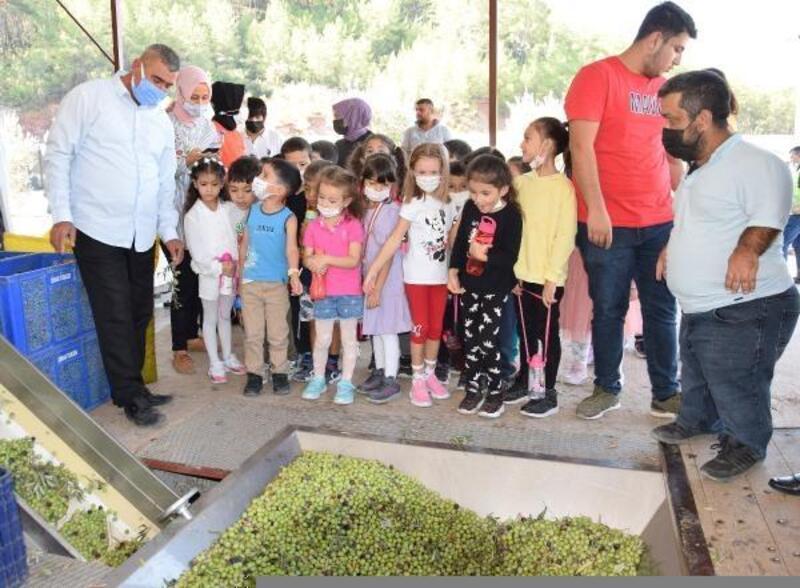 Minikler zeytinyağı fabrikasını gezdi