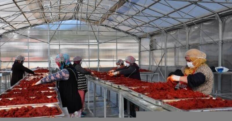İslahiye'de, kadınlar kurdukları kooperatifte ihracatı hedefliyor