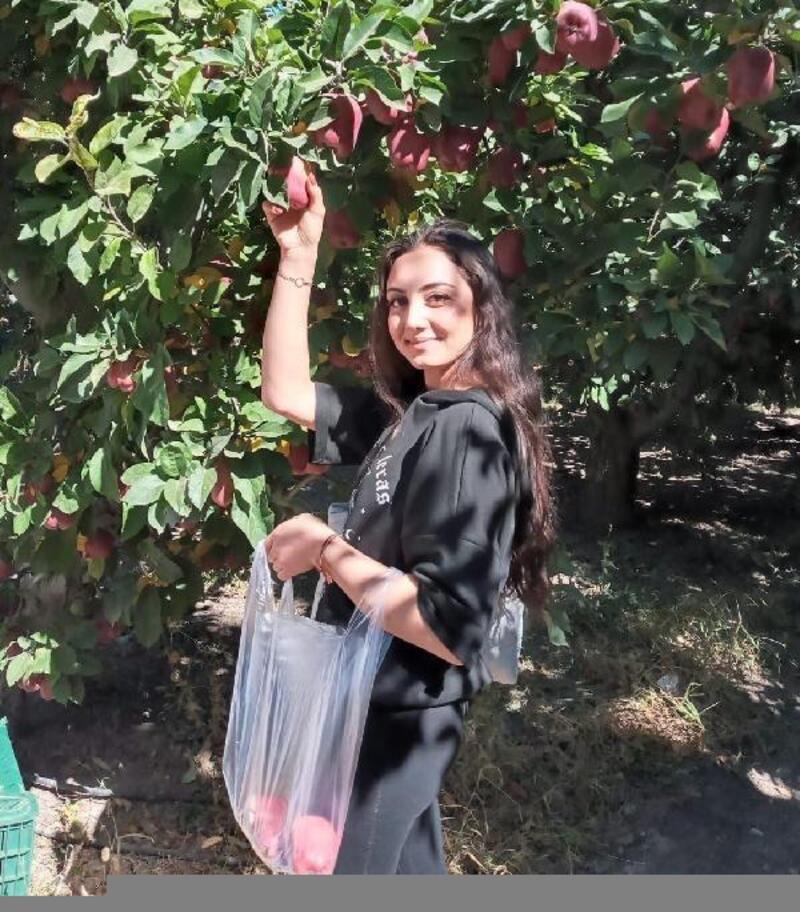 Üniversite öğrencileri elma topladı