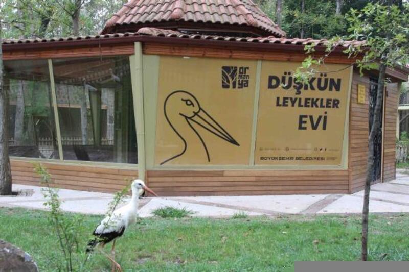 Osmanlı'dan esinlenerek Düşkün Leylekler Evi kuruldu