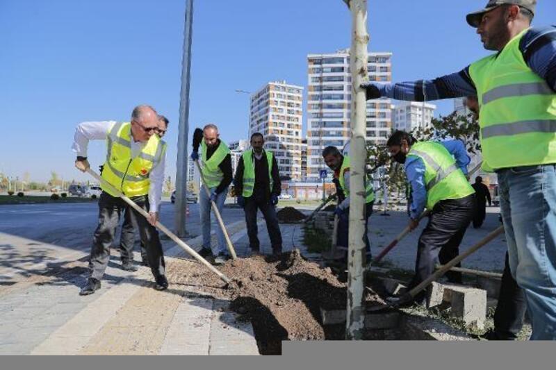 Başkan Bilgin 5 bininci ağacı toprakla buluşturdu