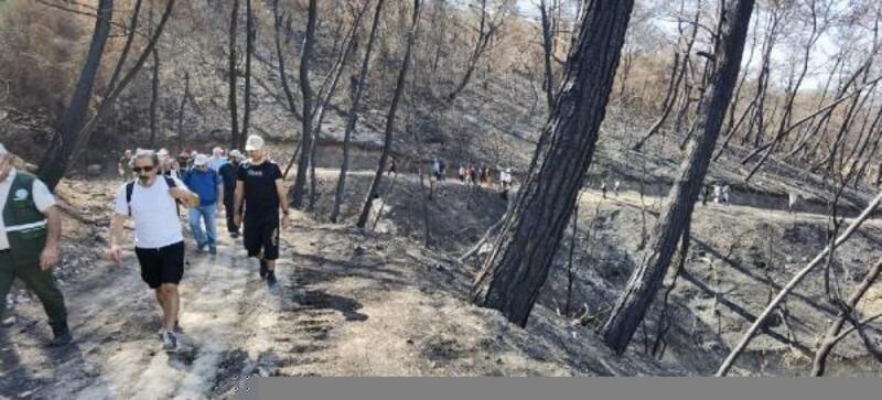 Yangınlarda zarar gören bölgede doğa yürüyüşü