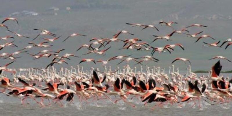 Erçek Gölü avlanma sahası ilan edildi