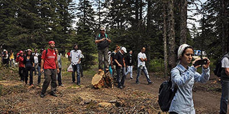 Teleferik hattı için ağaç kesilmesi protesto edildi