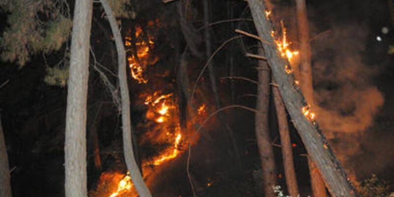 26 hektar ormanlık alan yandı