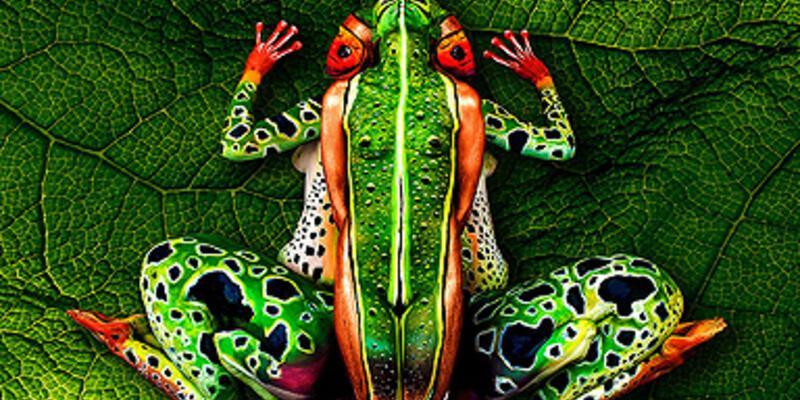 Sanatın 'doğa'sı