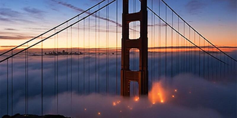 San Francisco'da sisin yolculuğu