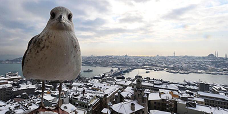 İstanbul'un hangi semti olurdunuz?