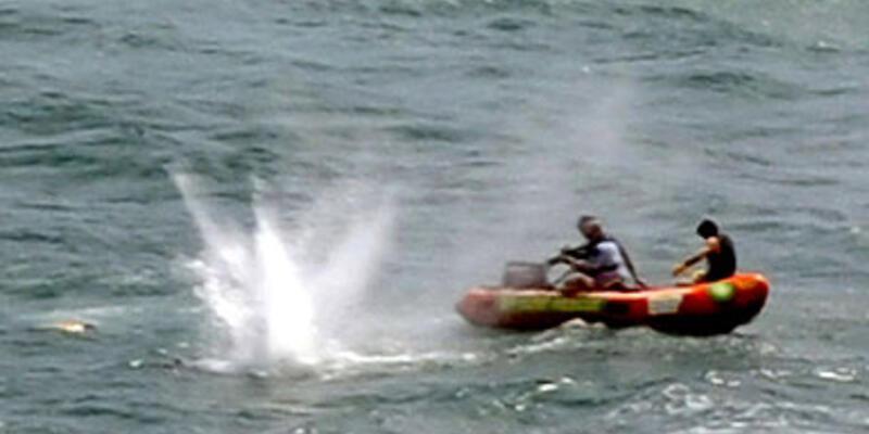 Yeni Zelanda'da köpekbalığı saldırısı: 1 ölü