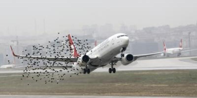 Atatürk Havalimanı rakip tanımıyor!..