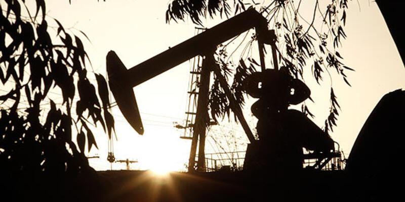 Kürt Bakan'dan petrol açıklaması