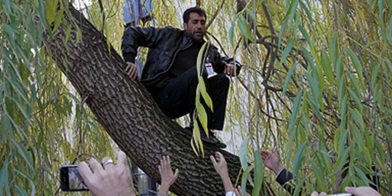 Söğüt ağacında eylem!