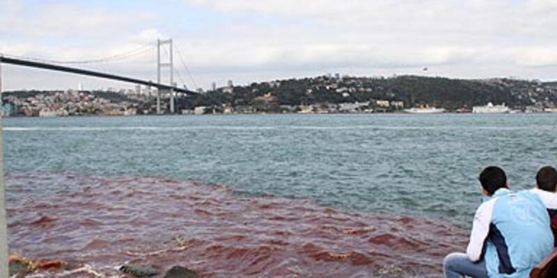 İstanbul Boğazı kan aktı!