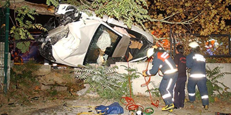 Çarptığı ağaç otomobilinin üzerine düştü!..
