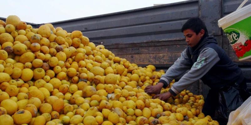 Bedava limon baldan tatlıdır