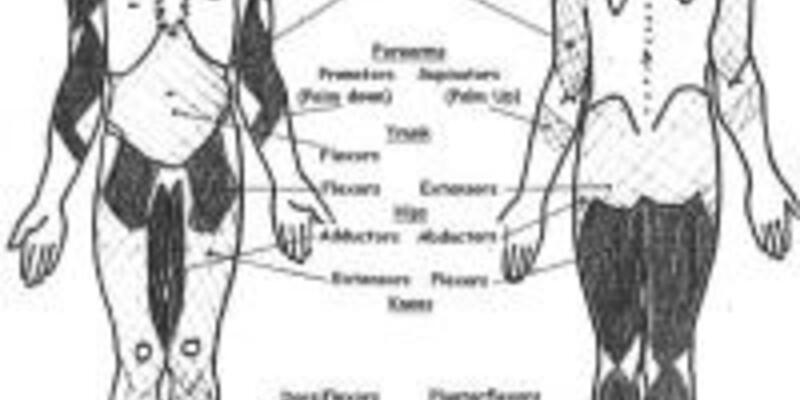 Spinal Müsküler Atrofi tedavisinde gelişme