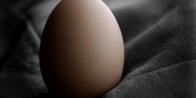 Yumurta ucuzladı