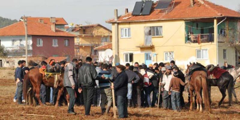Cirit müsabakasında çarpışan atlar öldü