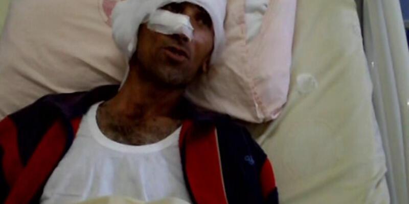 Bir ayı saldırısı haberi de Kars'tan