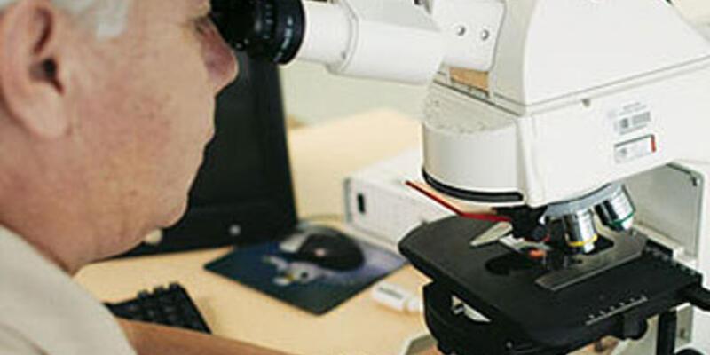 Moleküler Biyoloji ve Genetik bölümü hakkında bilinmesi gerekenler