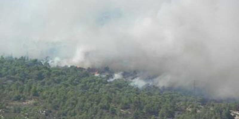Foça yangınını 3 PKK'lı çıkarmış!