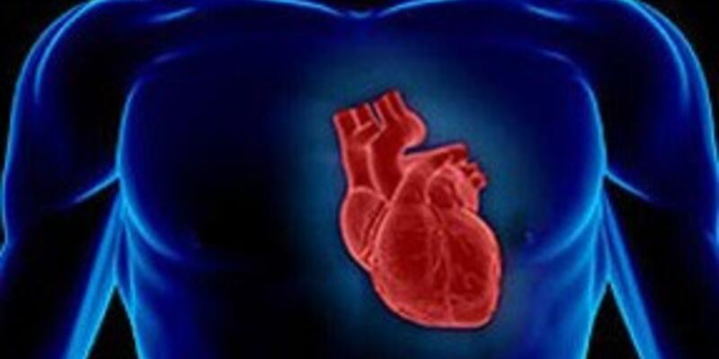Kalbi yenileyen ilaç farelerde başarılı oldu
