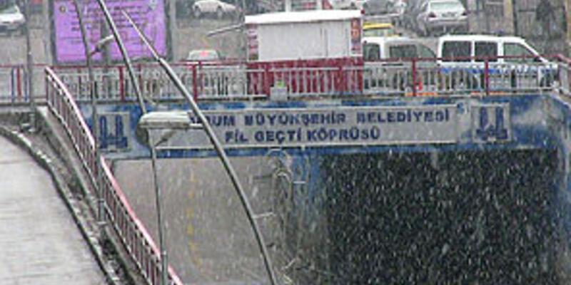 Erzurum'da lapa lapa kar yağdı!