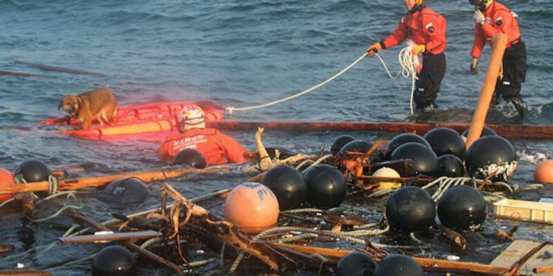 Fukuşima'dan Pasifik'e radyoaktif su sızıyor