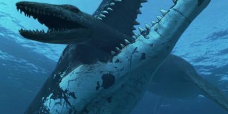 15 metrelik dev deniz canavarı