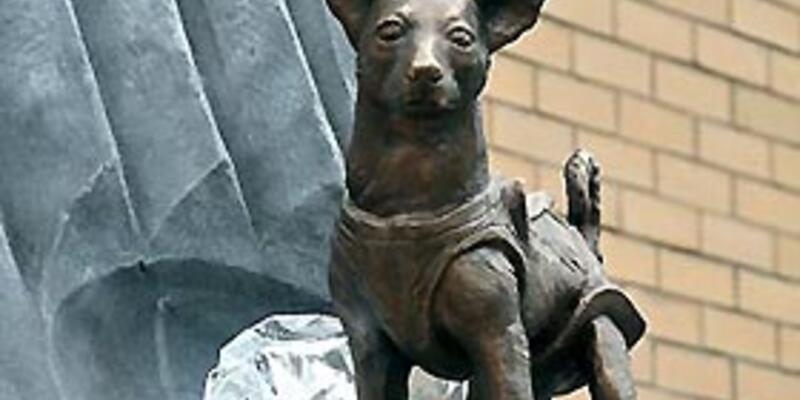 Uzaya giden ilk köpeğin heykeli yapıldı