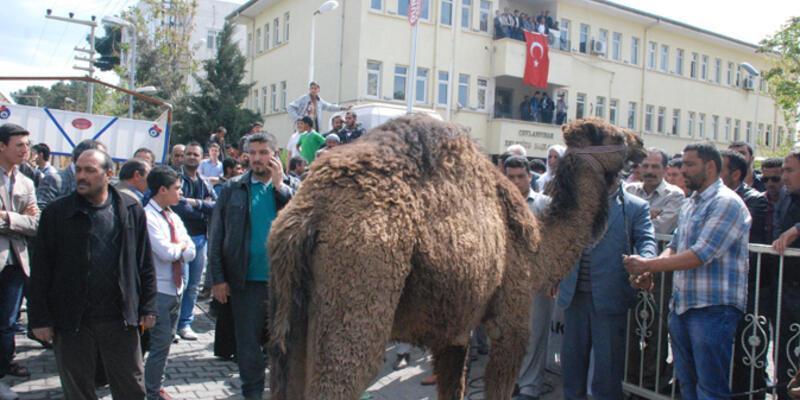 Menderes Atilla, deve kesilerek karşılandı