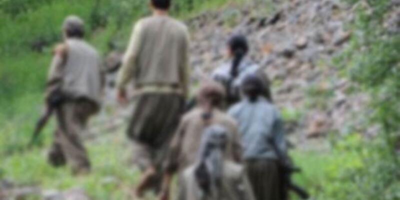 Diyarbakır Lice'de iki uzman çavuş kaçırıldı