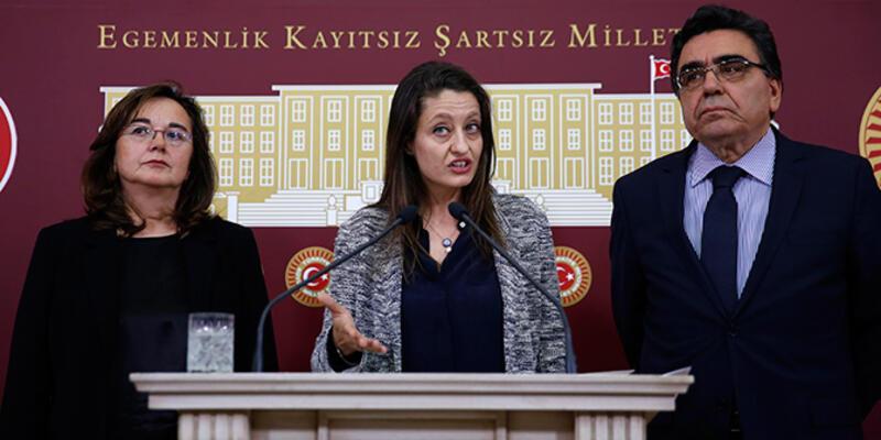 """Şafak Pavey: """"Türkiye, ILO anlaşmalarını uygulamıyor"""""""
