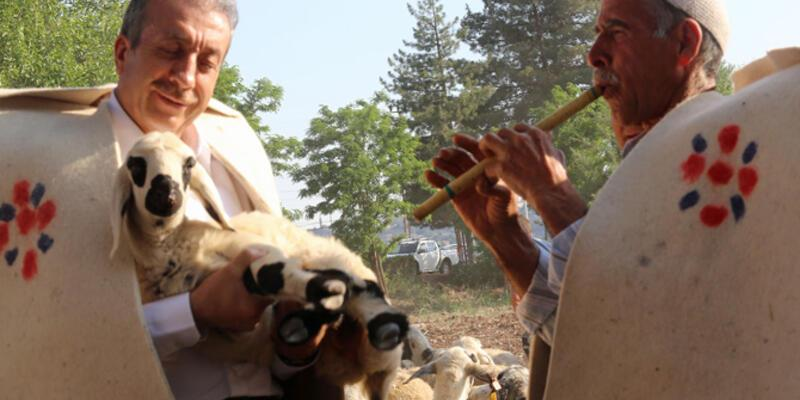 Mehdi Eker, çoban kıyafeti giyip sürü başına geçti