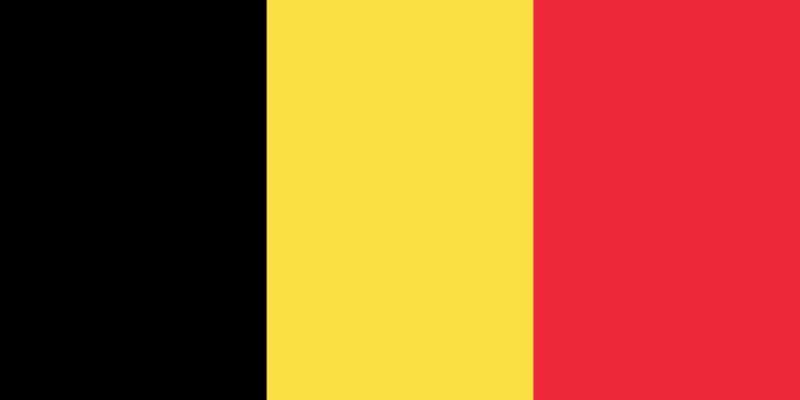 Belçika'da 81 mülteci gözaltında